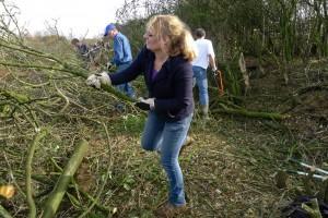 vrijwilliger werkt aan snoeien van sztruweel in bremde meer, balgoy